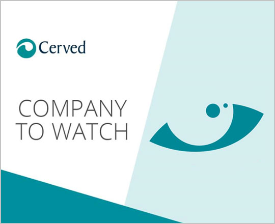 Salcavi Technic: Company to watch 2017 by Cerved